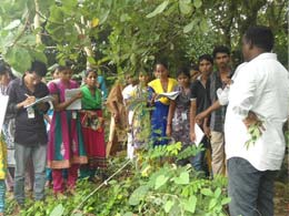 Two day training on Identification and uses of Medicinal plants for Govt. Degree Collage Students