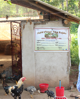 Country Poultry Farming